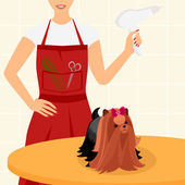 Professional dog grooming for Yorkshire Terrier — Stock Vector