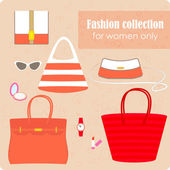 Women's fashion collection of bags and accessories — Stock Vector