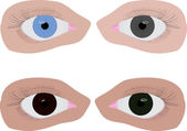 Four different colour eyes — Stock Vector