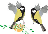 Great tit  spring — Stock Vector