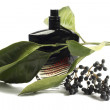Bottle of perfume, personal accessory, aromatic fragrant odor — Foto de stock #41440651