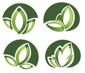 Set Of Green Leaves Design Elements — Stock Vector