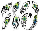 Feathers — Vector de stock