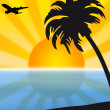 An airplane flying over an exotic tropical beach — Stock Photo #40089673