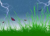 Butterflies in storm — Foto Stock