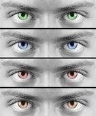 Colorful eyes — Stock Photo