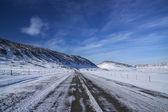 Icelandic Winter — Stock Photo