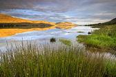 Medalfellsvatn — Stok fotoğraf