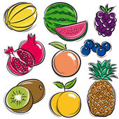 Set of fruits, melon, watermelon, blackberry, peach, vector — Stock Vector