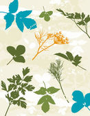 Many tracing silhouettes: grass, leafs, flower, vector illustration — Stock Vector
