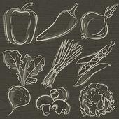 Set of vegetable, pepper,onions, beans, vector illustration — Stock Vector