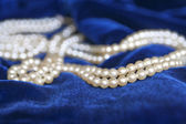 Necklace of pearls over blue velvet — Foto de Stock