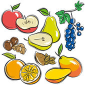 Set of fruits, apple, pear, mango, orange,  vector — Stock Vector