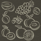 Set of fruits, grapes, melon, apricot, peach, vector — Vetorial Stock