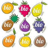 Set of organic  fruit, vector illustration — Stock Vector