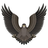 Eagle on a White Background — Stockvector