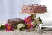 Chocolate and Berry Cake — Stock Photo