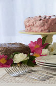 Close up of Berry and Chocolate Cake — Stock Photo