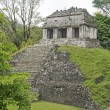 Classic Maya temple in Palenque — Stock Photo