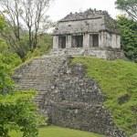 Classic Maya temple in Palenque — Foto Stock