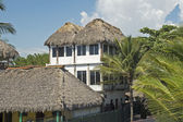 Thatched roof jungle residence — Stock Photo