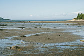Low tide on the St. Lawrence River estuary — Stock Photo
