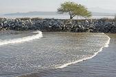 Pacific Ocean bay in Mexico — Stock Photo