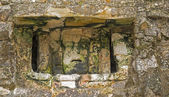 Mayan stone sculpture in Yaxchilan — 图库照片