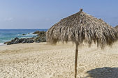 Thatched beach umbrella by the ocean — Stock Photo