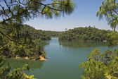 Tranquil lake in Chiapas — Stock Photo
