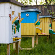 Beehives in the private apiary in summer — Stock Photo #49282087