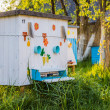 Beehives in the private apiary — Stock Photo #49282961
