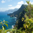 Madeira, north-east coast near Santana — Stock Photo #39971901