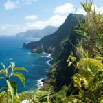 Madeira, north-east coast near Santana — Stock Photo