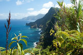 Madeira, north-east coast near Santana — Stock Photo