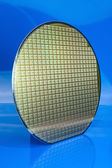 Silicon wafer on blue background — Stock Photo