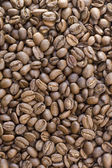Coffee beans on white background — Stok fotoğraf
