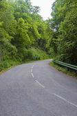 Route déserte — Photo