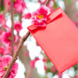 Stock Photo: Chinese red pocket