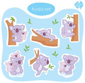 Australian Koala Set — Stock Vector