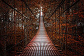 Long Steel Suspension bridge in the forest — Stock Photo