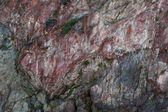 Red granite — Stockfoto