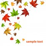 Autumn leaf fall — Stock Vector