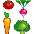 Stock Vector: Vegetable