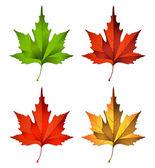 Ilustracja wektorowa jesień liść — Wektor stockowy