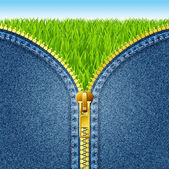 Zipper open on denim texture. Green grass. — Stock Vector