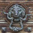 Stock Photo: Baroque style lion door knob