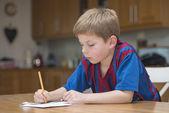 Garçon à faire leurs devoirs — Photo