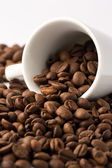Roasted brown coffee beans — Stock Photo