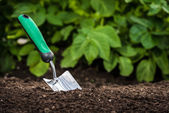 Gardening shovel in the soil — Stock Photo